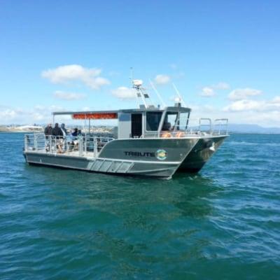 Mussel barge safaris