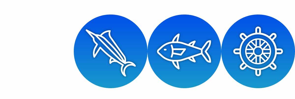 New Zealand Fishing Charters game fishing, coastal fishing and cruising